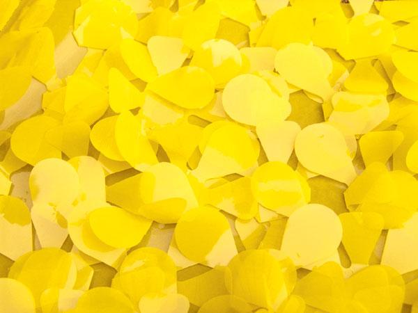Standard Vinyl: Yellow